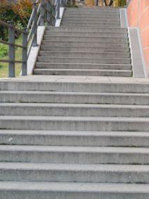 Wie Sie in sieben Schritten zu beruflichen Erfolg gelangen.